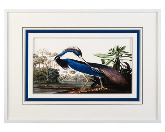 Picture of AUDUBON'S BLUE HERON